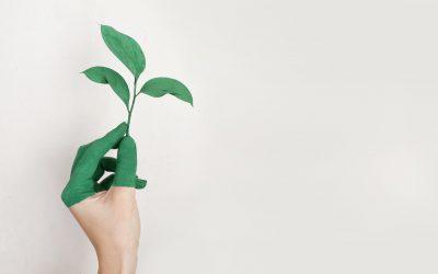 La paradoja de la sostenibilidad en la era del Black Friday