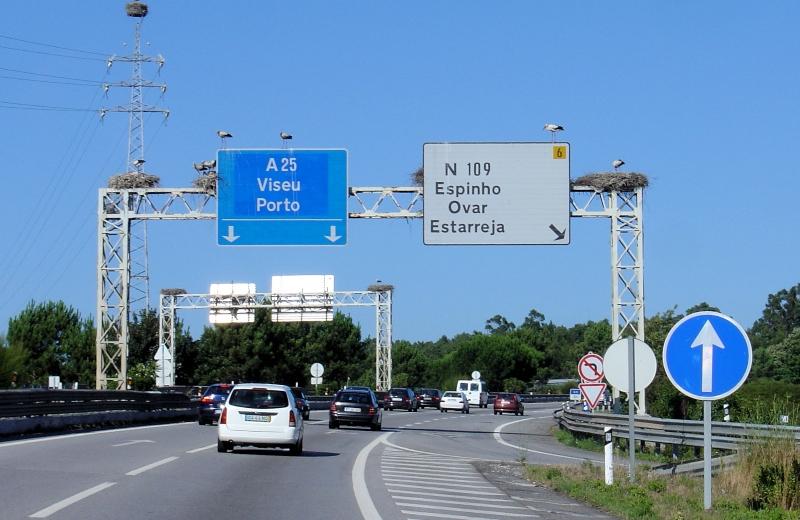 Prohibición de circular a vehículos de más de 3.5 metros de ancho en la A25/IP5 en Portugal